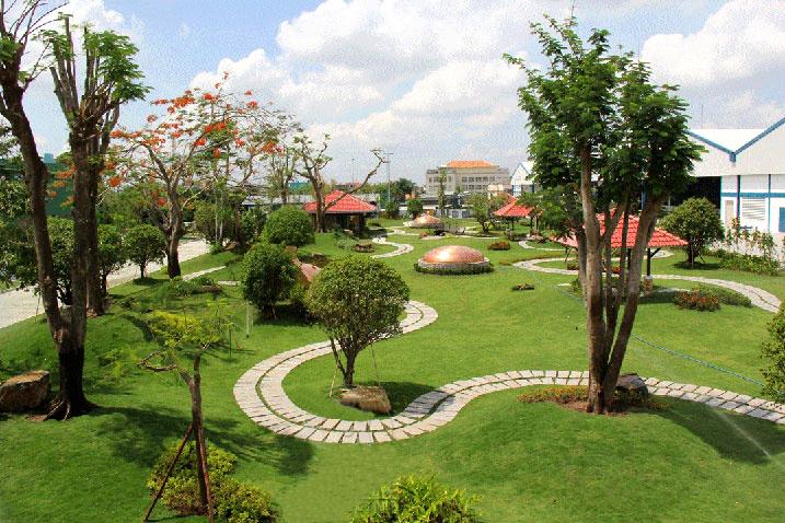Dịch vụ trồng và chăm sóc cây, cỏ cho các toà nhà vilag